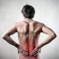 Bonita Springs Slipped Disc Chiropractor